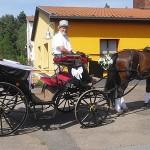 Mit der Hochzeitskutsche zum Thümmlitzsee – warum nicht?